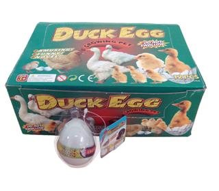 EXPANSION POULTRY EGGS TOYS